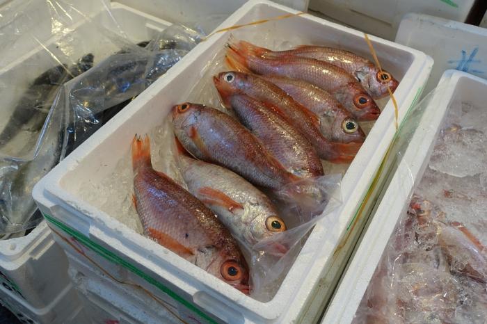 tsukiji_kalat