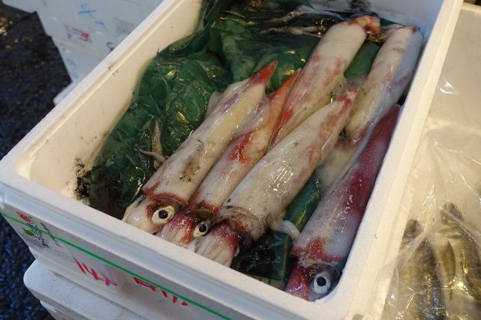 tsukiji_mustekala